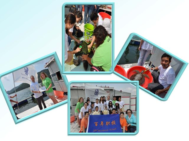 RC Sanya visiting Sea Turtle hospital